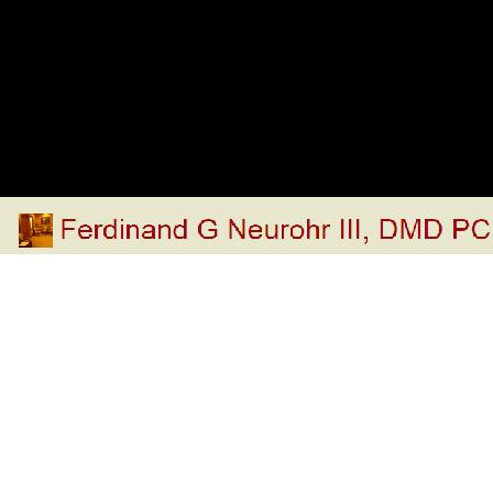 Ferdinand G Neurohr, III DMD