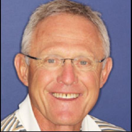 Dr. Fred L Sayre