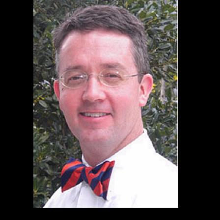 Dr. Gary A Wolanek