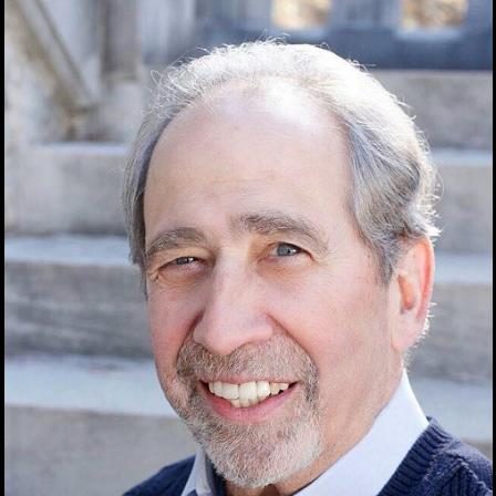 Dr. Harold J Koppel