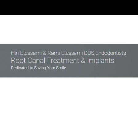 Dr. Hirbod Etessami