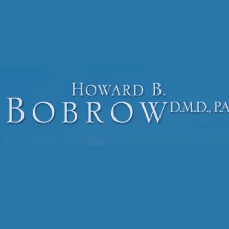 Dr. Howard B Bobrow