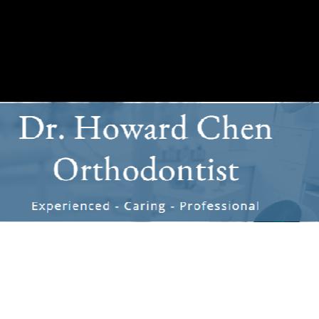 Dr. Howard Y Chen