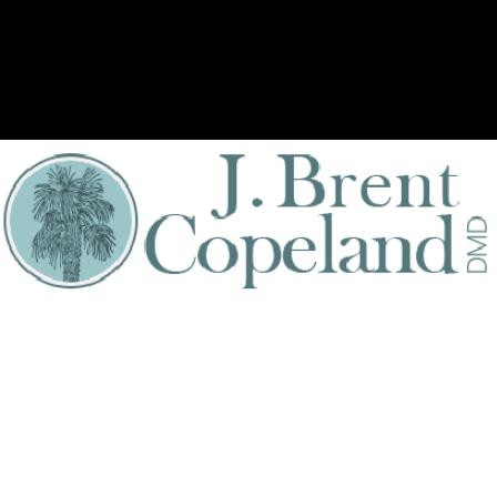 Dr. J B Copeland