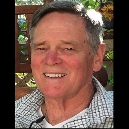 Dr. Jack C Hoey
