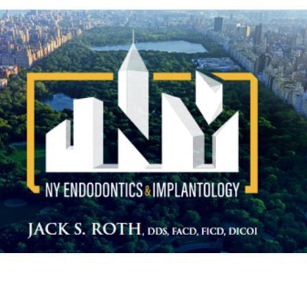 Dr. Jack S Roth