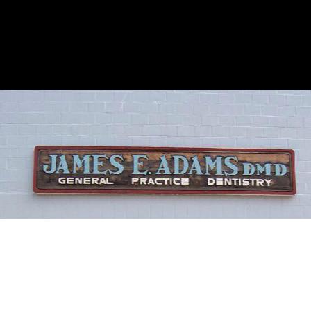 Dr. James E Adams