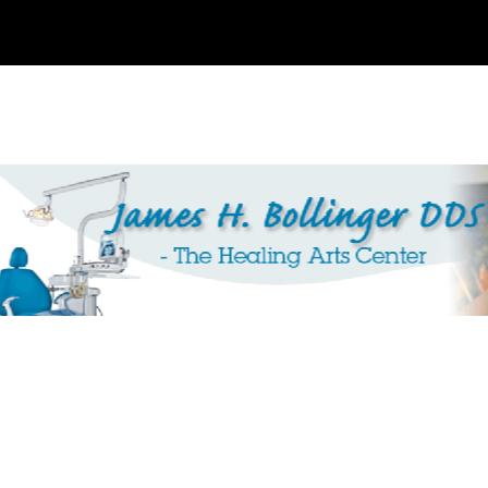 Dr. James H Bollinger