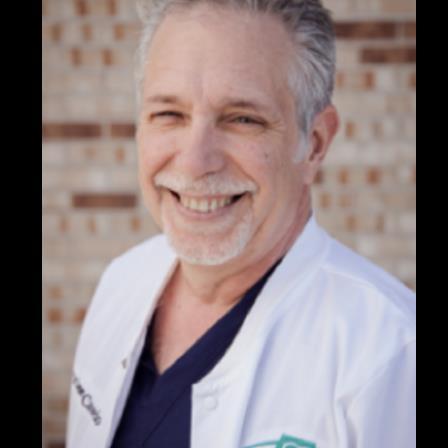 Dr. James E. LoCascio