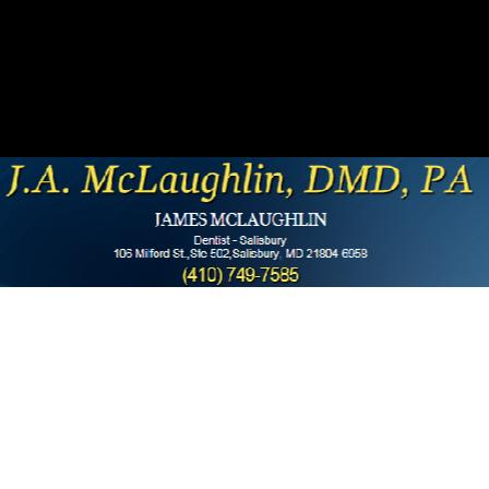 Dr. James A McLaughlin