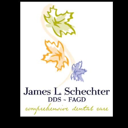 Dr. James L Schechter