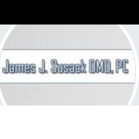Dr. James J Susack