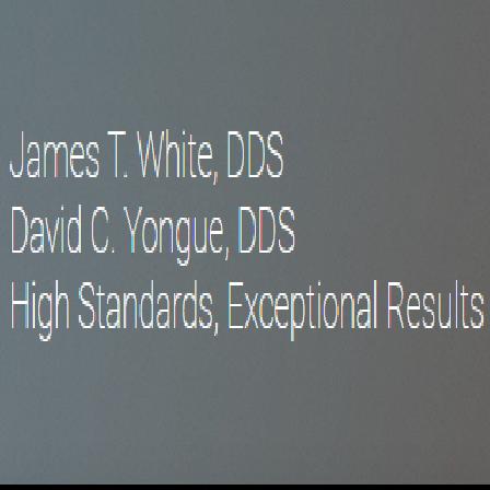 Dr. James T White