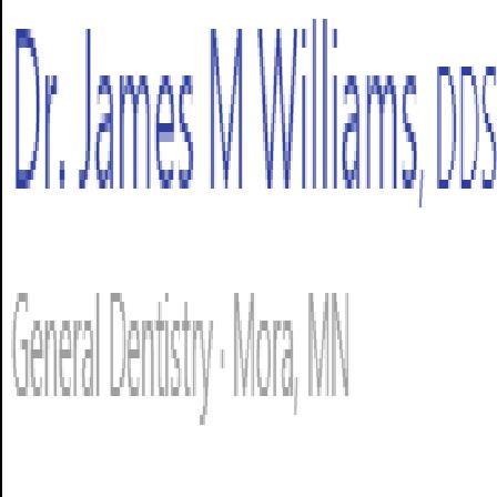 Dr. James M Williams