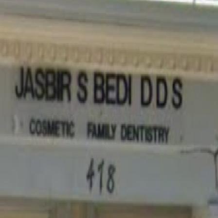 Dr. Jasbir S Bedi