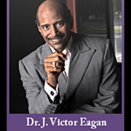 Dr. Jay Eagan