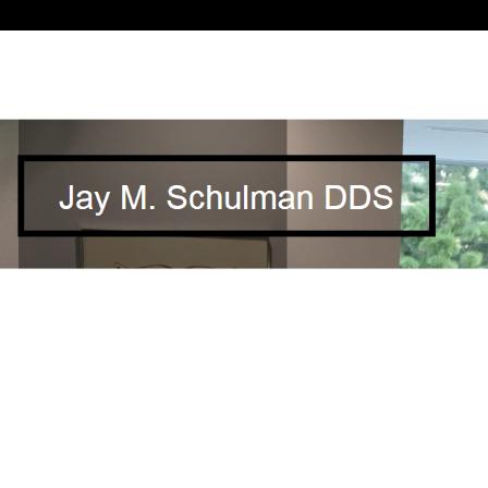 Dr. Jay M Schulman