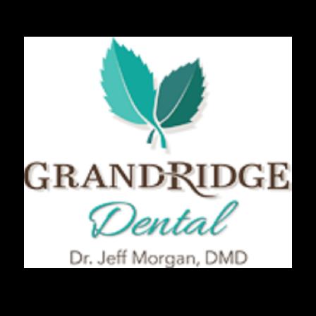 Dr. Jeff D Morgan