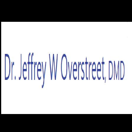 Dr. Jeffrey W Overstreet