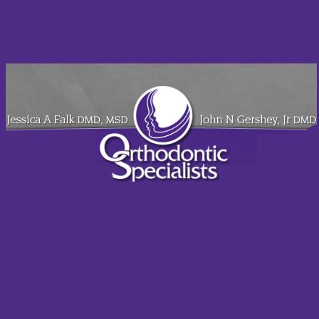 Dr. Jessica A Falk