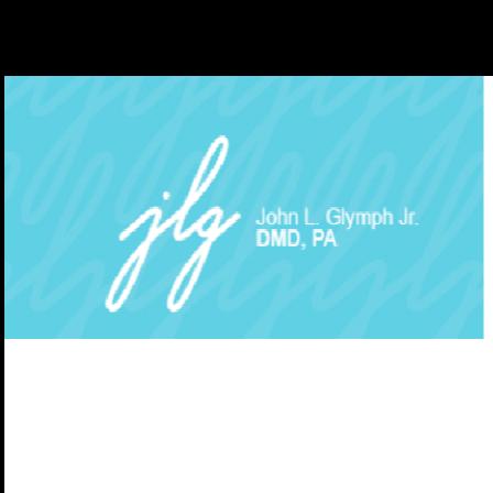 Dr. John L Glymph, Jr.