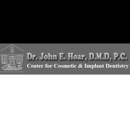 Dr. John E Hoar
