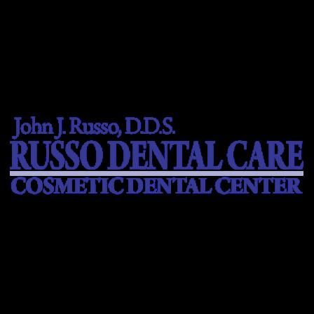 Dr. John J Russo