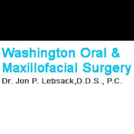 Dr. Jon P Lebsack