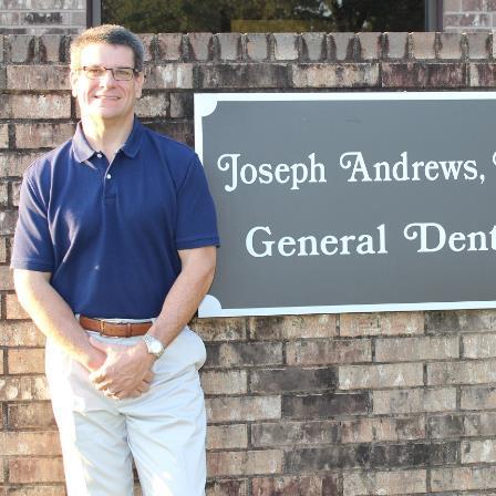 Dr. Joseph C Andrews