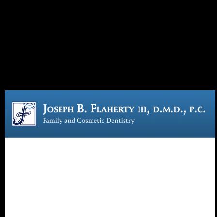 Dr. Joseph B Flaherty