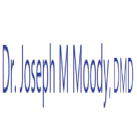 Dr. Joseph M Moody