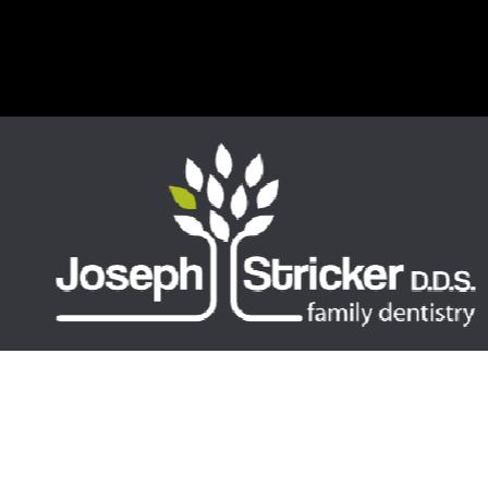 Dr. Joseph J Stricker