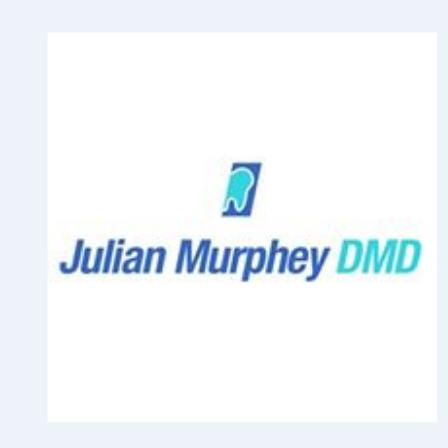 Dr. Julian I Murphey