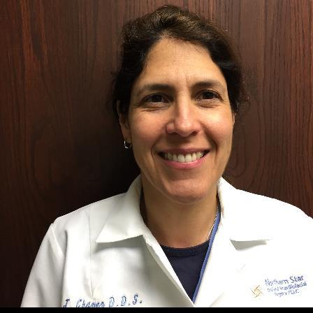 Dr. Julie A Chavez