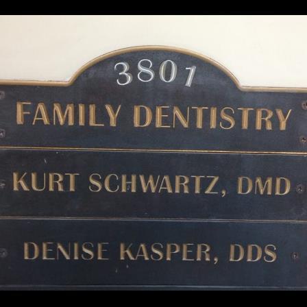 Dr. Kurt P Schwartz