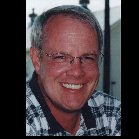 Dr. Larry D Krause
