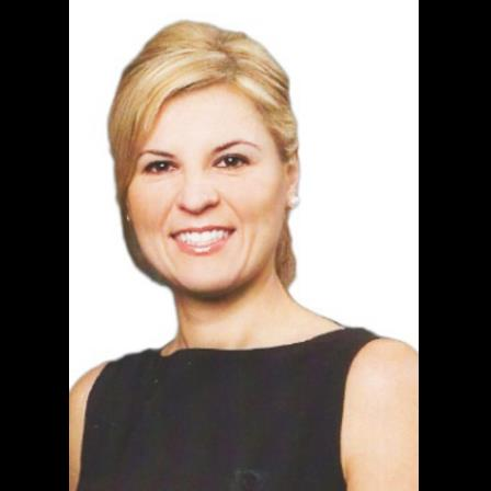 Dr. Laura Zetu