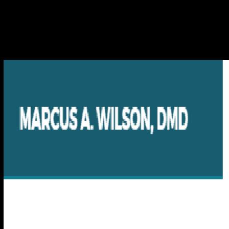 Dr. Marcus A Wilson