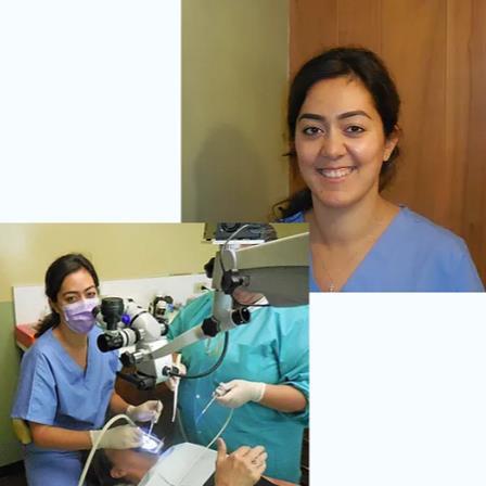 Dr. Maria Dakessian