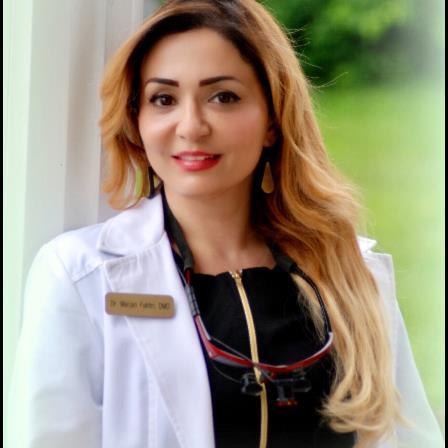 Dr. Marjan Fakhri