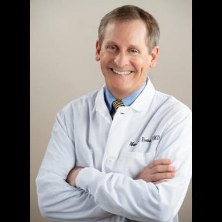 Dr. Mark W Evans