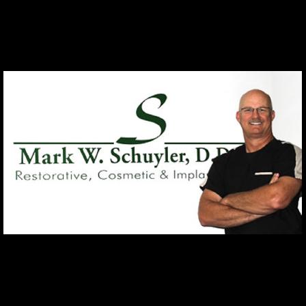 Dr. Mark W Schuyler