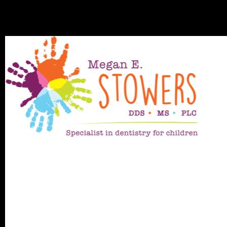 Dr. Megan E. Stowers
