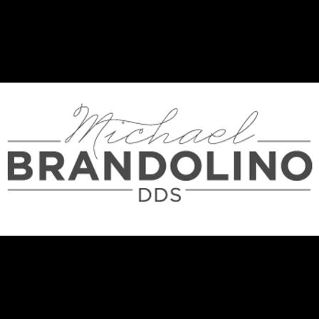 Dr. Michael J Brandolino