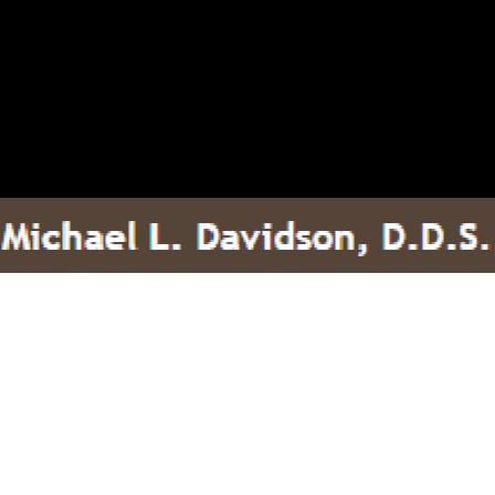 Dr. Michael L Davidson