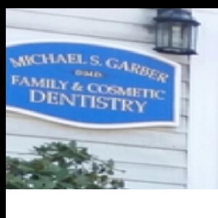 Dr. Michael S Garber