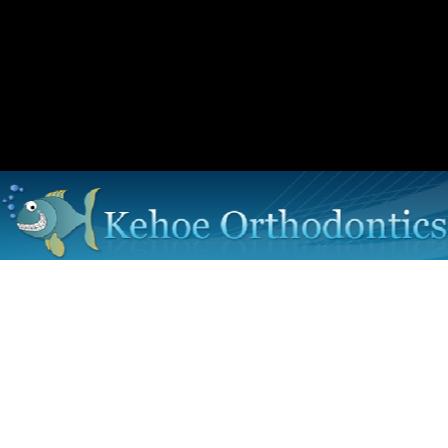 Dr. Michael J. Kehoe