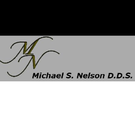 Dr. Michael S Nelson