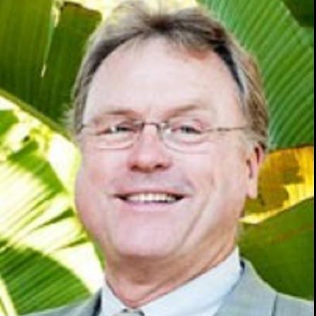 Dr. Michael L Potts