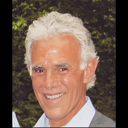 Dr. Michael J Santo